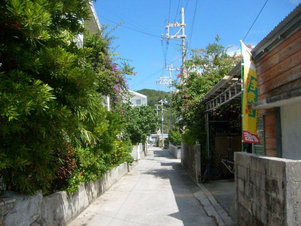 Le chemin principal du seul village de l'île