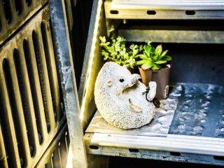 Quelques unes des décorations s'inspirant des hérissons disposées à l'entrée du Café