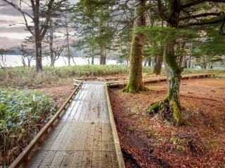 호수 전체의 3 키로미터 위킹코스