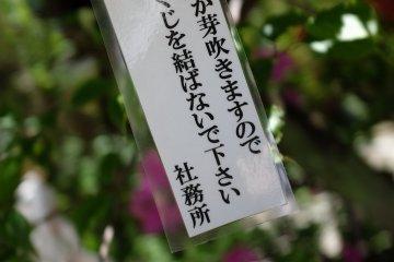 「請勿於樹枝上綁上神簽」