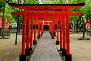 a torii path in front of an auxillary shrine