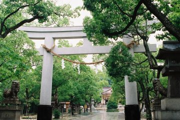 The largest torii of the shrine, over the main walkway (my digital camera had ran out of battery so I had switched to film at this point)