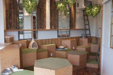 咖啡廳室內設計裝潢:柔和的木色