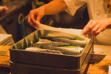 Chef getting the mackerel ready