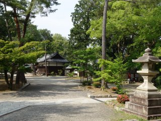 Sights of spacious grounds and plenty of greenery first greet visitors