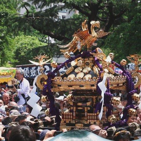 เทศกาล Sanja Matsuri
