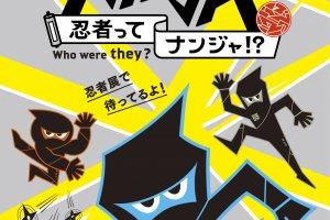 Ninjas - Quem Foram?