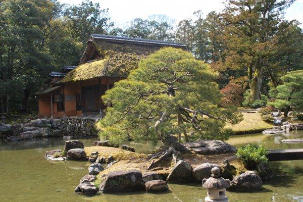 Lanterne et étang devant la maison de thé Shokin-tei