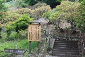 Les escaliers qui amènent au temple à proximité du sommet