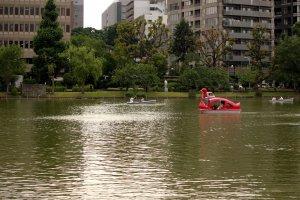 El lago Shinobazu para pasear en bote.