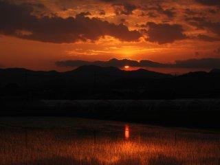 Puesta de sol sobre los campos de arroz.