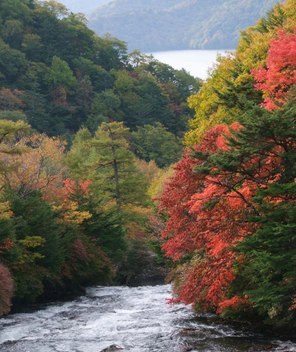 La rivière se jette dans le lac Chuzen-ji
