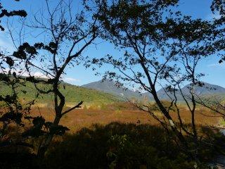 가을에는 센조가하라 습지대에 다양한 색깔들이 서서히 나타난다