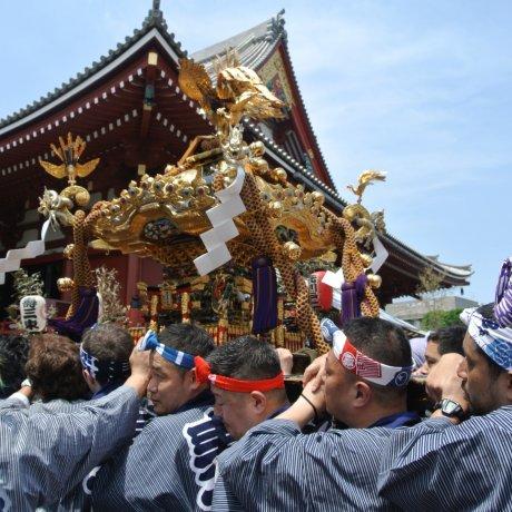 도쿄 산자 페스티벌