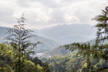 Yamanashi's Mount Takagawa