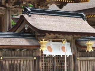 Gorgeous entrance to these shrine buildings