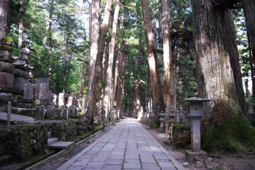 The two kilometer long path through Okunoin that leads up to Kukai\'s mausoleum