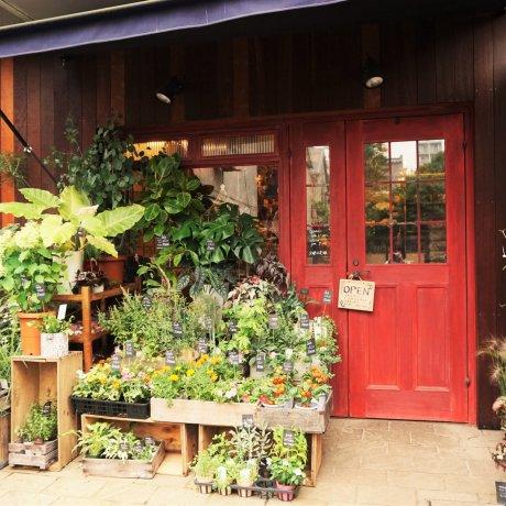 隱身在神樂坂的花園咖啡廳-Jardin nostalgique