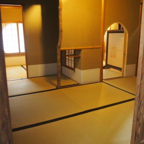 Matsumoto Castle's Tea Ceremony