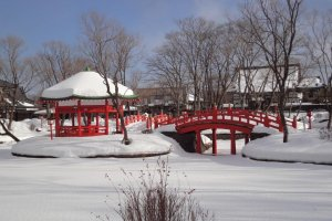 Edo Garden and Pond - under deep snow!