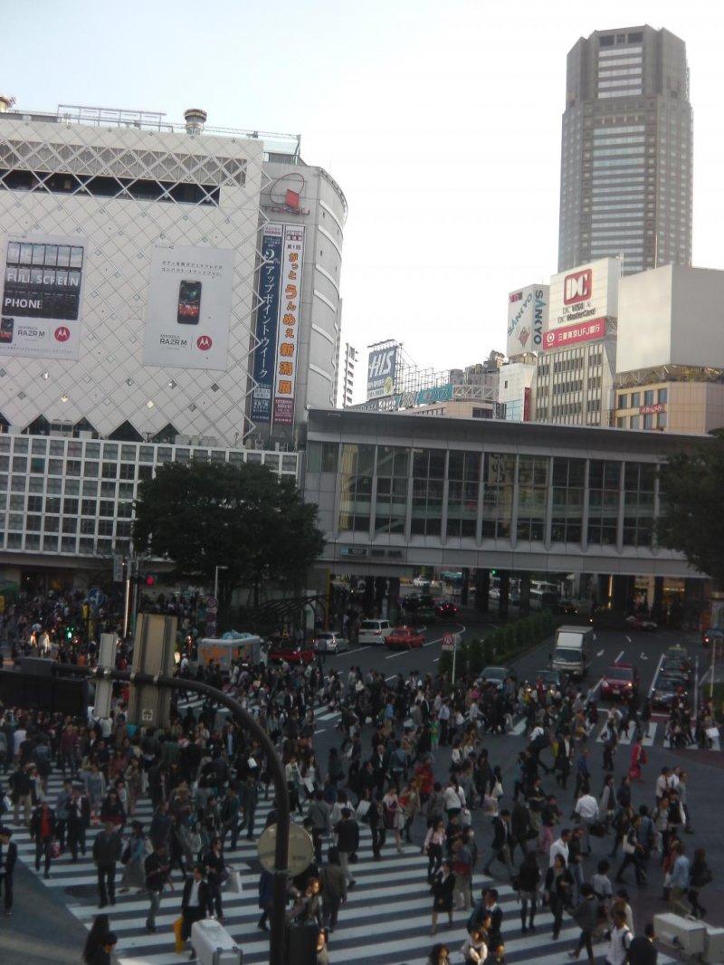 Shibuya crossing tokyo japan travel japan tourism for Visit tokyo