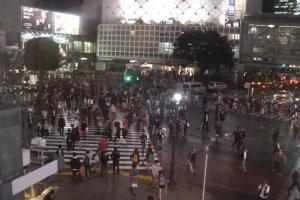 Malam Tokyo yang basah