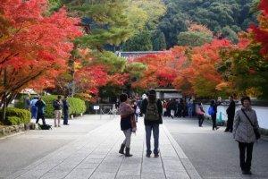 ฤดูใบไม้ร่วงที่วัดเอะอิคันโดะ (Eikando)