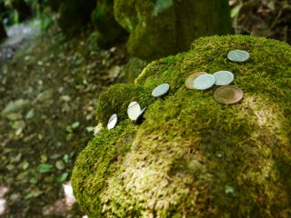 Visitors leave coins on statue's heads for good luck