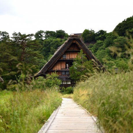 Gassho-style Houses in Shirakawa-go