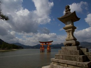 There are so many different views of the torii in the water that it's hard to pick a favorite one.