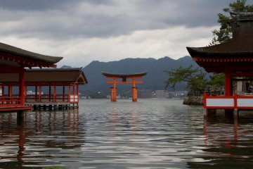 <p>The enormous torii (gate) floating at high tide</p>