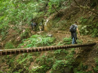 The hike up to these falls will cross over several narrow wooden bridges
