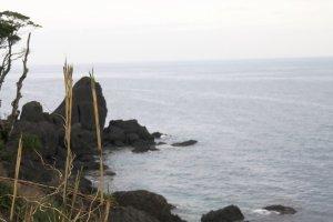The wild coastline