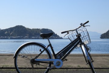 Take in the seabreezes in the open air bicycles