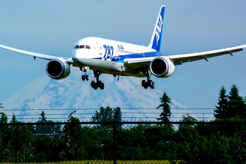 Fly in comfort on ANA\'s Boeing 787 Dreamliner