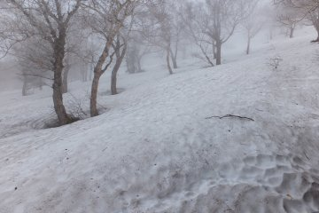 The trail has disappeared in deep snow at  Station 7