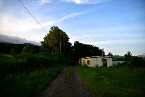 Gravel road leading to the house