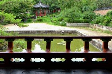 Korean garden, gazebo to gazebo