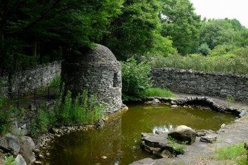 Charming Irish garden
