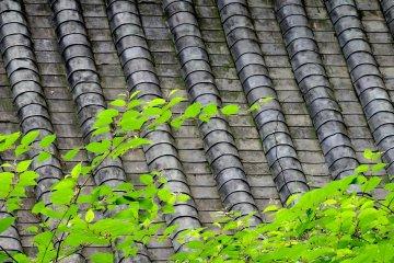 Texture and pattern at Tōshō-gū