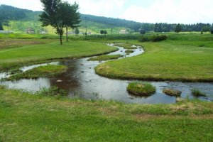 Quelques pistes le long du parcours de golf