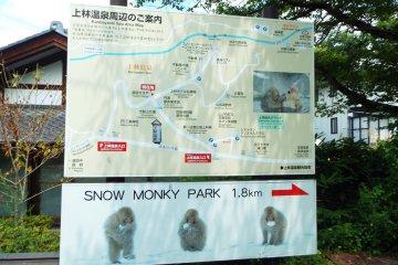 1.8 kilometers to the Monkey Park