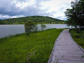Một lối đi có lót ván nghĩa là bạn có thể tận hưởng phong cảnh mà không bị dính bùn vào chân