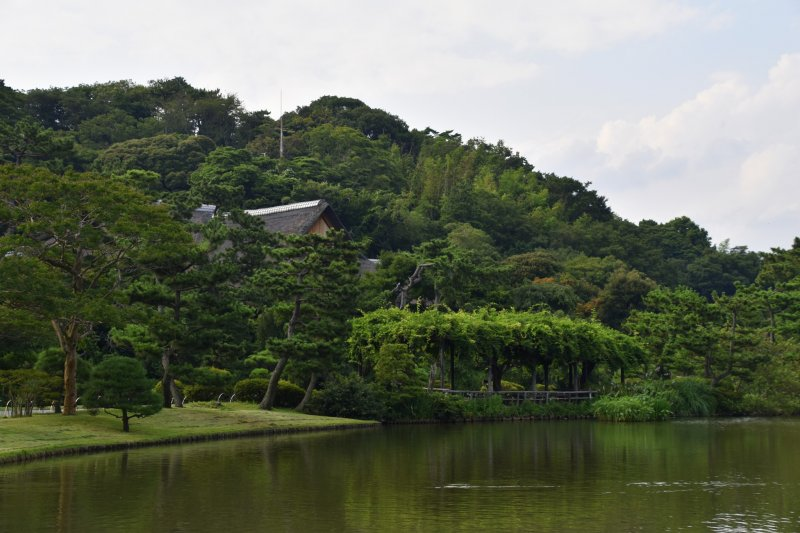 여름의 산케이엔 큰 연못