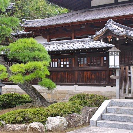 วัดเซนกะคุ-จิ ในชิโระคะเนะได
