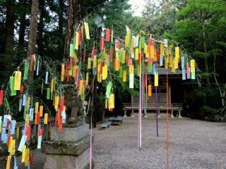 Left-over Tanabata decorations