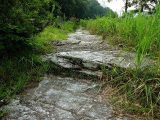 A natural path of stepping stones