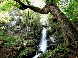 A água cai sobre as rochas
