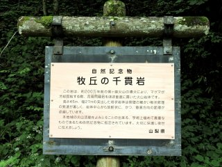 Sign explaining about the rock