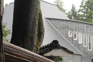 A view of the unusual roof, from Oyama Jinja